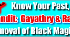 Indian Astrologer, Pandit Gayathry & Raghuram- Palm Reading, Face Reading & Horoscope